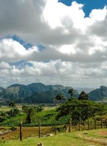 The Valley of Viñales, Cuba at its best!