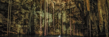 Cenotes of Yucatan: live from the underworld