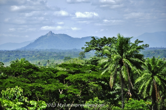 A beautiful sight of Nigerian green countryside