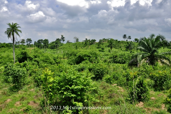The green countryside of Nigeria
