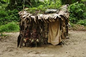 Pygmey hut