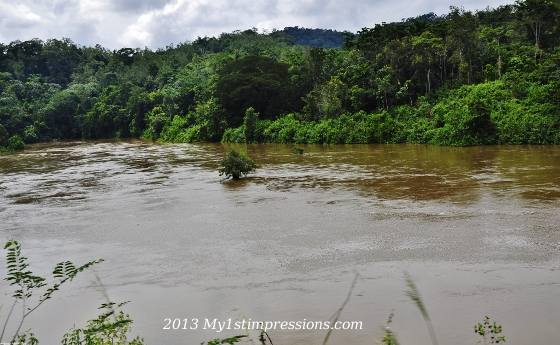 The unknown river who followed us along gabon