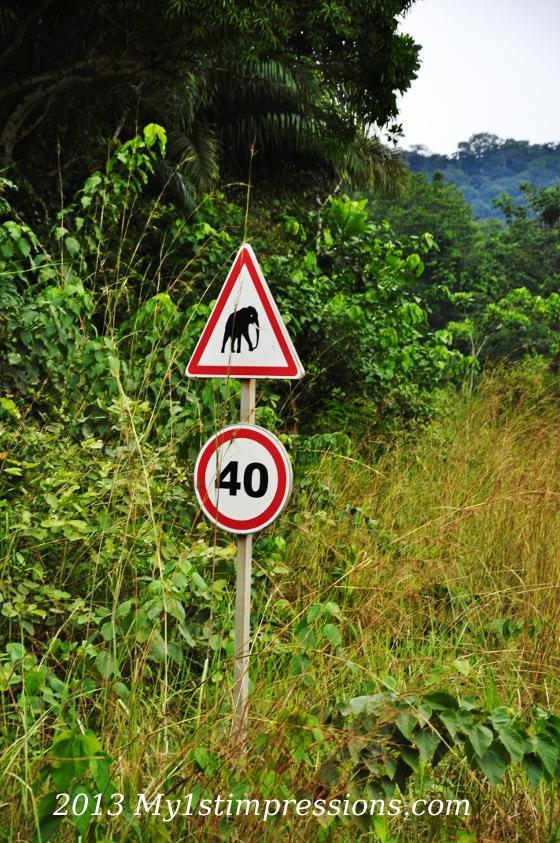 On the roads of Elephants