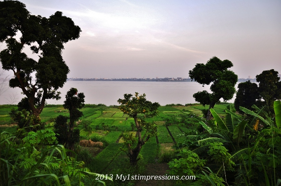 Plantations along the Congo River