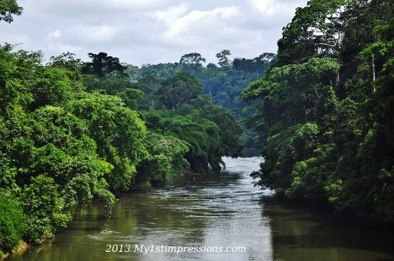 Stunning Cameroun