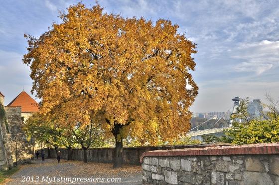 Autumn in town has beautiful colours in Bratislava