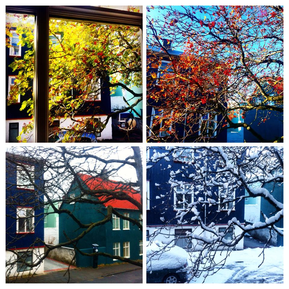 Iceland's four seasons