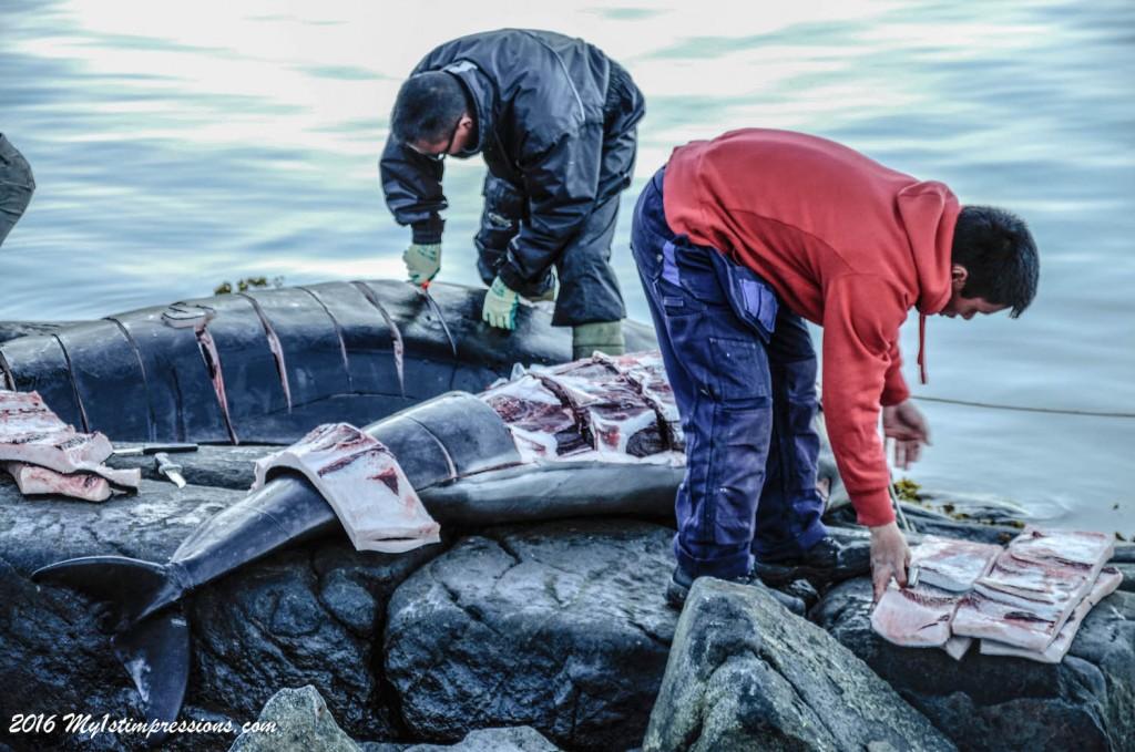 Inuit, whale hunting, Greenland, Kulusuk