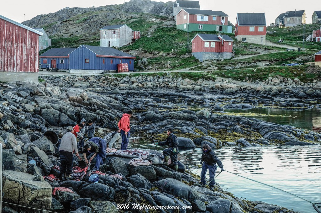 Kulusuk, greenland, whale hunting