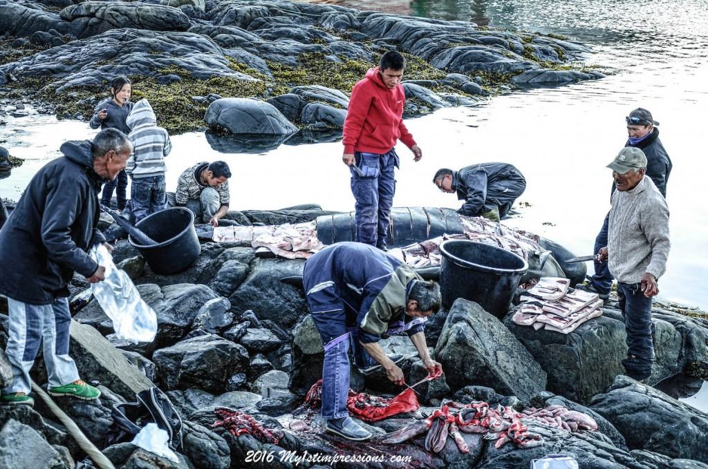 Seal meat, whale meat, whale hunting,  greenland, kulusuk, Inuit