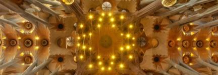 In the sacred woods of La Sagrada Familia